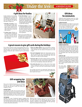 Newspaper Toolbox special section example 08